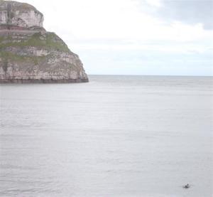 Dolphins Llandudno North Wales
