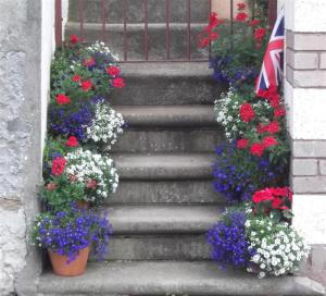 Olympic Floral Display Llandudno