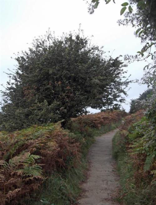 Haulfre Gardens path Llandudno North Wales