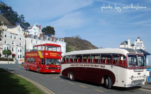 Llandudno Tour Buses (Large)