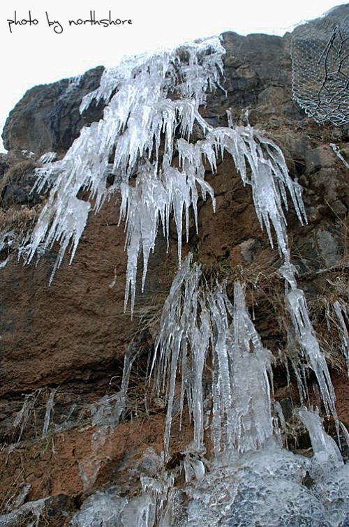 Picture of icicles on the Great Orme Llandudno