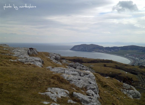 Picture of the Little Orme Llandudno
