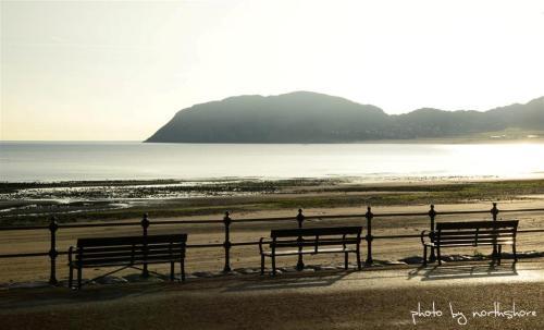 Picture of Llandudno Promenade and beach (Large)