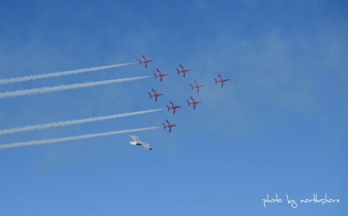 Llandudno-Red-Arrows